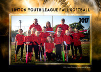 City Pest 2017 Fall Ball