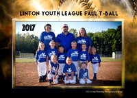 Linton Sporting Goods 2017 Fall Ball