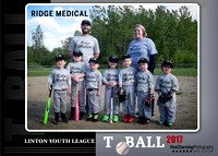 Ridge Medical TBall | 2017